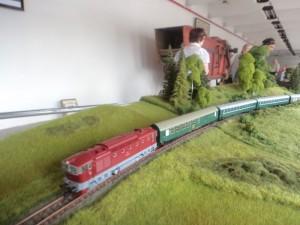 8 DSC08036