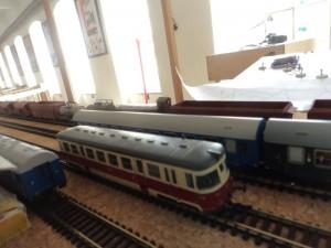 5d DSC08529